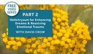 [Video Series] Part 2: Resolve Emotional Trauma w/Helichrysum & Activate your Dreams