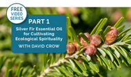 [Video Series] Part 1: Deepen Your Spirituality with Silver Fir Essential Oil