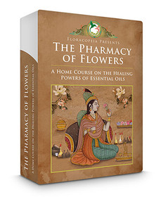 The Pharmacy of Flowers: A Home Course on Essential Oils