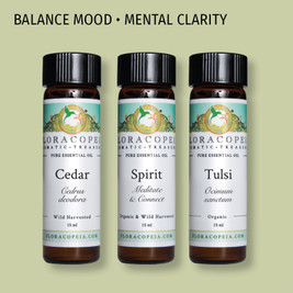 spirit  and meditation enhancing essential oils for the diffuser