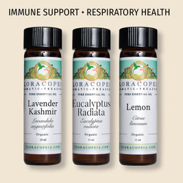 collection of gentle oils for immune system health support