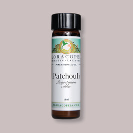 Indian Patchouli rich aromatic essential oil