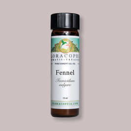 sweet fennel essential oil for soothing the body and mind