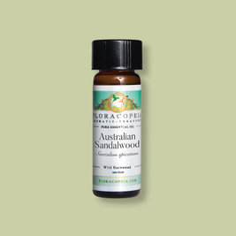sustainable sandalwood oil for aromatherapy