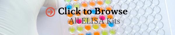 browse-elisa-test-kits.png