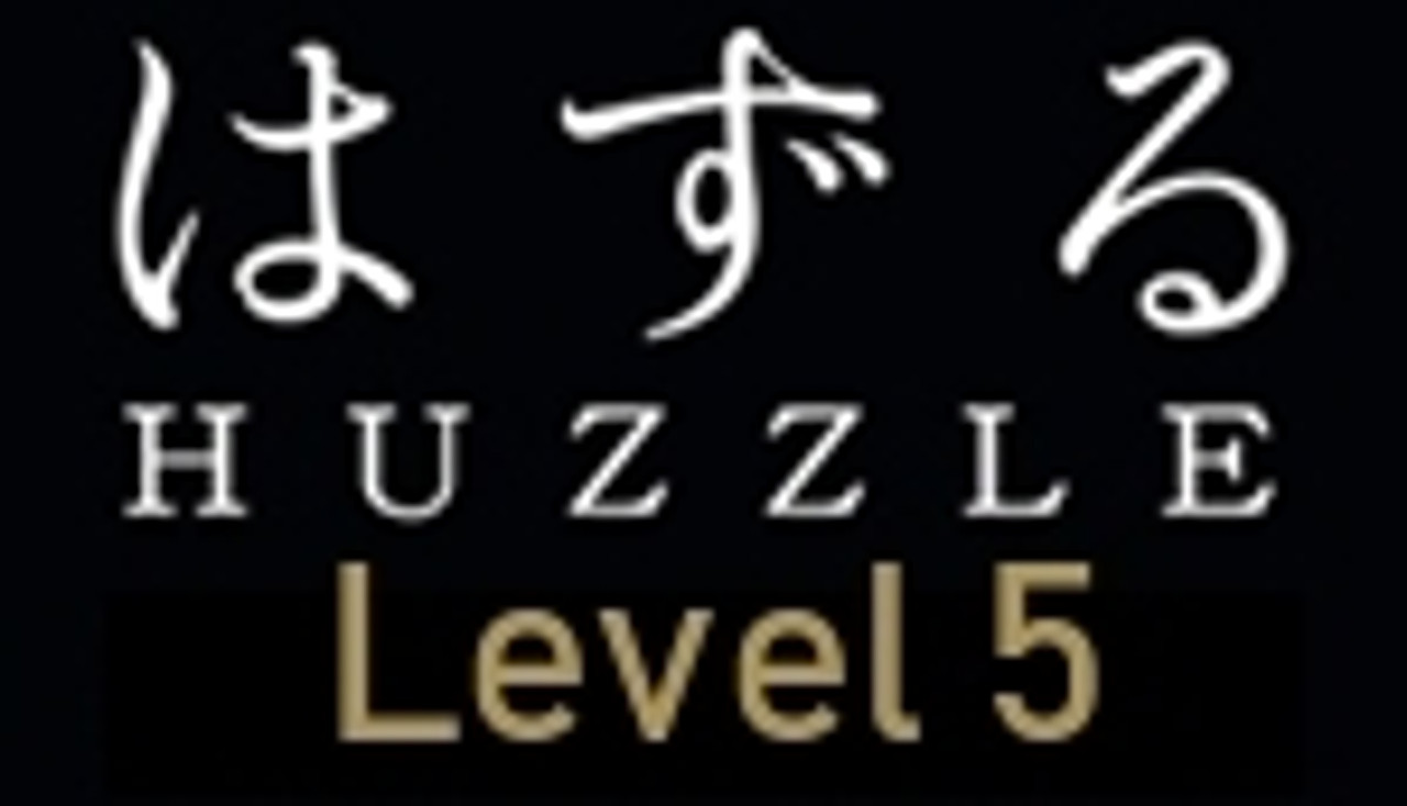 Skill Level 5 Expert Huzzle Puzzles