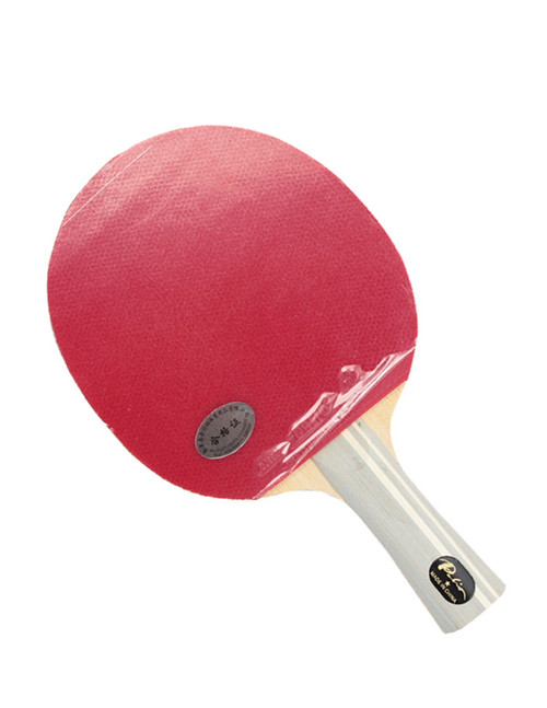 Palio 1 Star Student Table Tennis Bat with HK1997 rubbers. Complete with zipped racket case