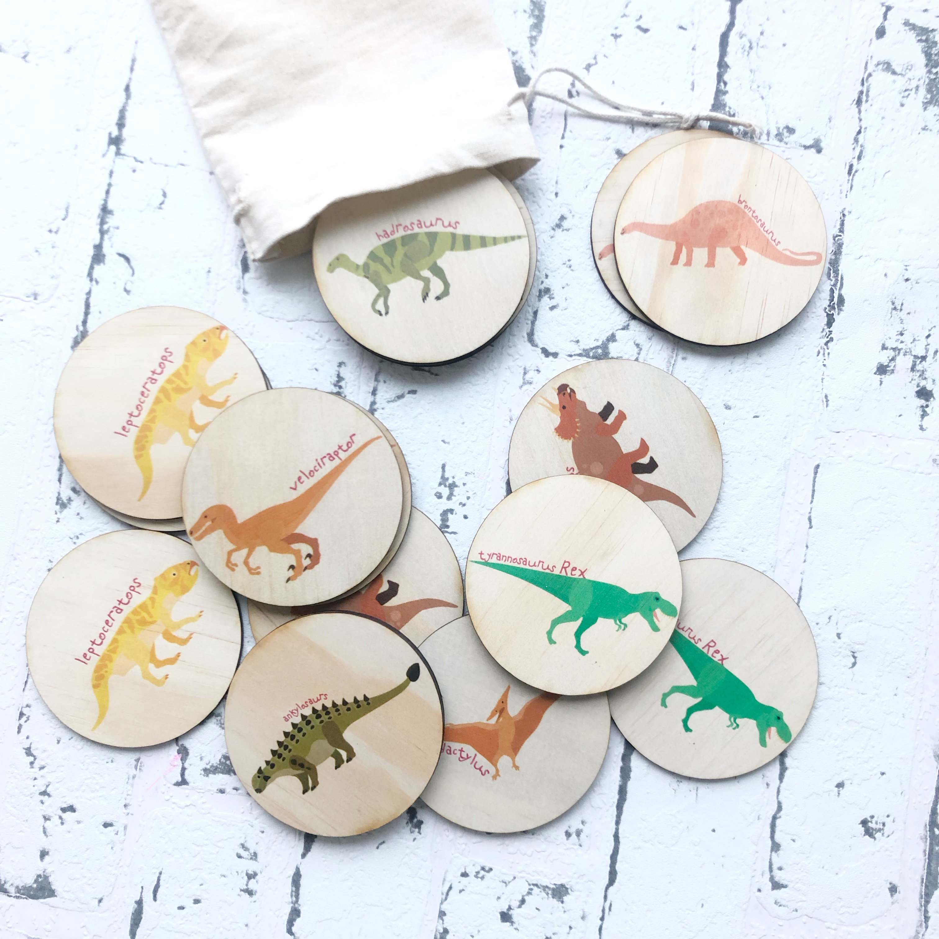 Dinosaur Memory Match