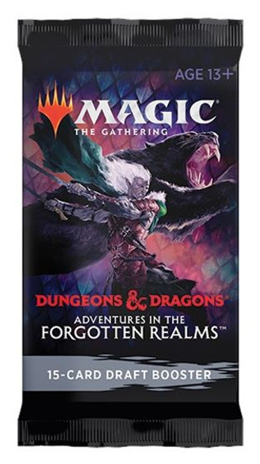 Magic the Gathering: Forgotten Realms Draft Booster