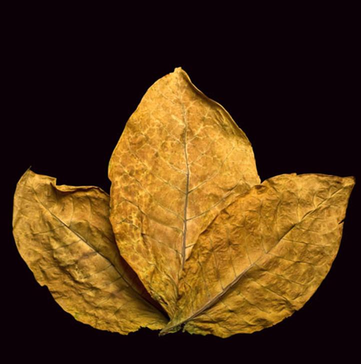 euro leaf reserve personal vapourizer eliquid ecigforlife