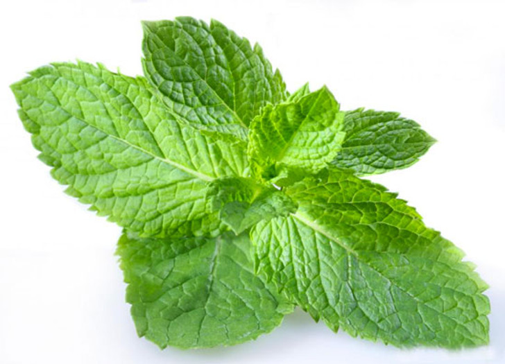 Peppermint zerocig eliquid for ecigforlife