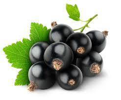 blackcurrant-reserve-for-ecigforlife.jpeg