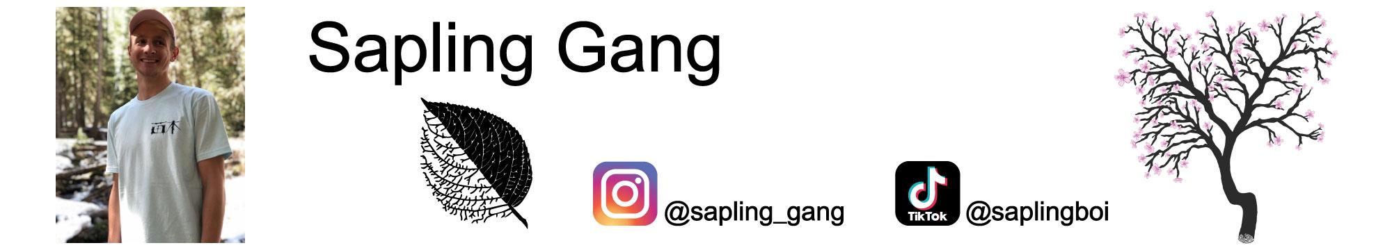 Sapling Gang