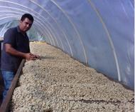 Meet Nelson Soza, Coffee Producer