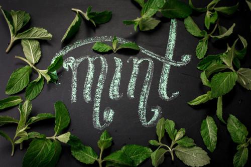 Marakesh Mint Green Tea