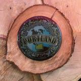 Dynamic Discs Dye Max 2014 Portland Worlds Silver Suspect