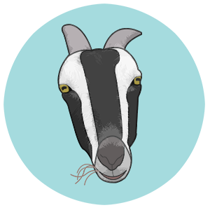 CharleyThe Goat