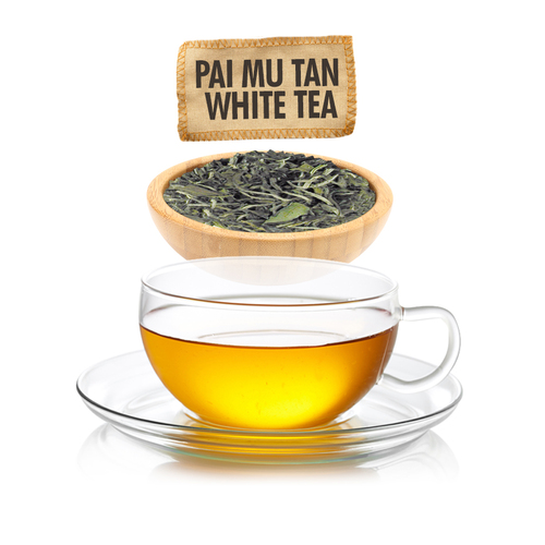 Pai Mu Tan White Tea  - Loose Leaf - Sampler Size - 1oz