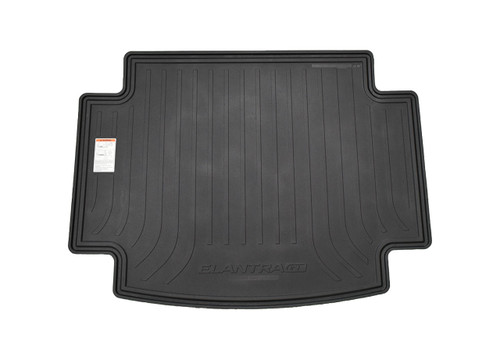 2018-2020 Hyundai Elantra GT Reversible Cargo Tray (Rubber Side)