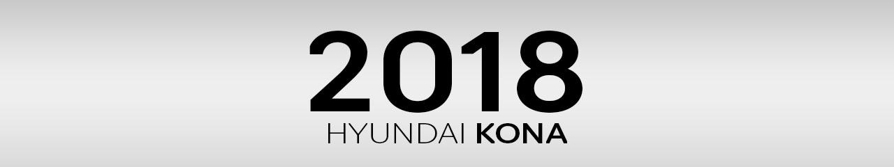2018 Hyundai Kona Accessories and Parts