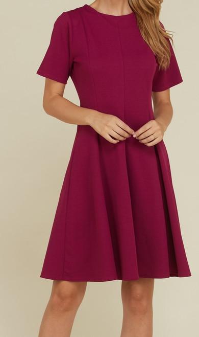 Knit Paneled Flair Dress