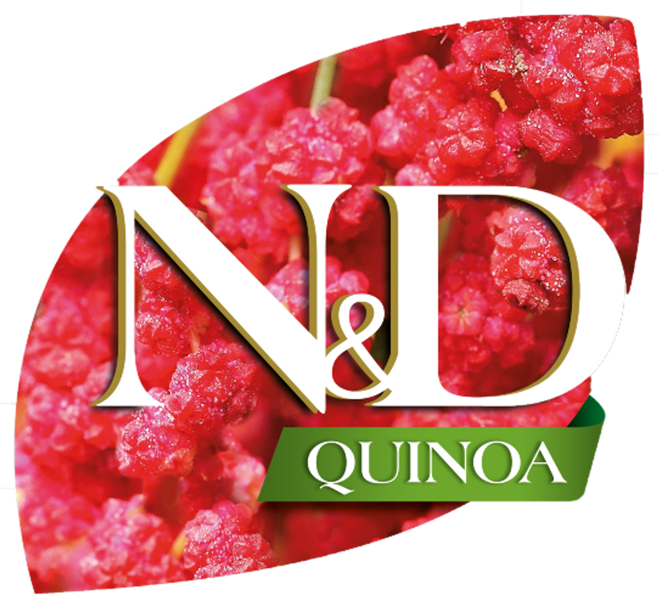 N&D Quinoa for Dogs