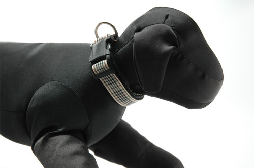 Kips Plaid Collar on Black Webbing