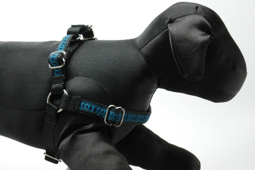 Kips Illusion Bones Harness on Black Webbing