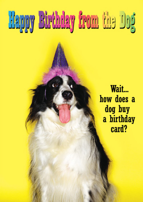 Happy Birthday from the Dog Greeting Card
