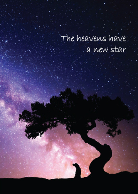 The Heavens Have a New Star