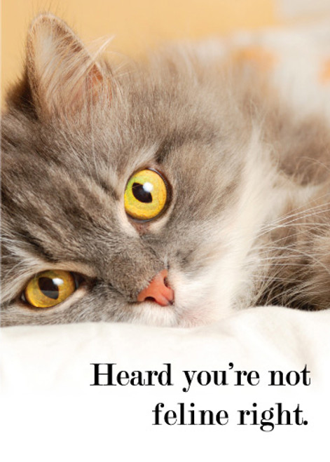 Heard You're Not Feline Right Greeting Card