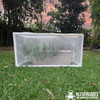 Side view of a long self watering pot from Bunnings with trees and sunset in the background with a PVC pipe and 3 way connector fittings protective frame  attached with Snap Clamps from Klever Cages Australia