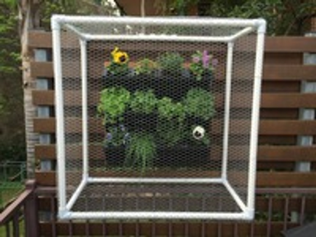 Vertical garden protection from bugs and other pests.