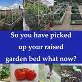 ​So you have picked up your raised garden bed from Bunnings, Aldi or Stratco What now?