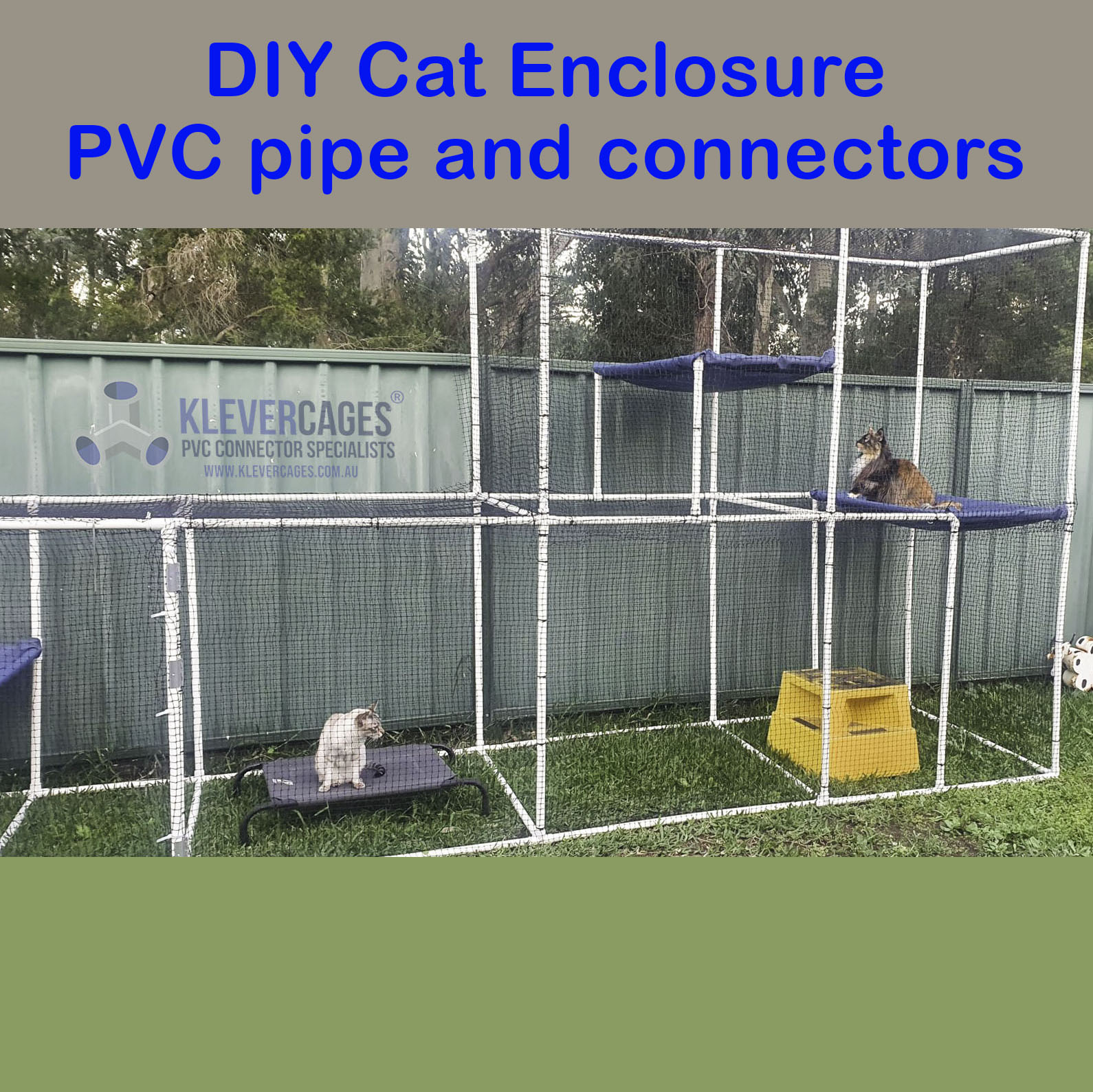 Cat enclosure built with 3 enclosure kits from Klever Cages with 5 ways. With 2 x cat sitting on blue hammocks