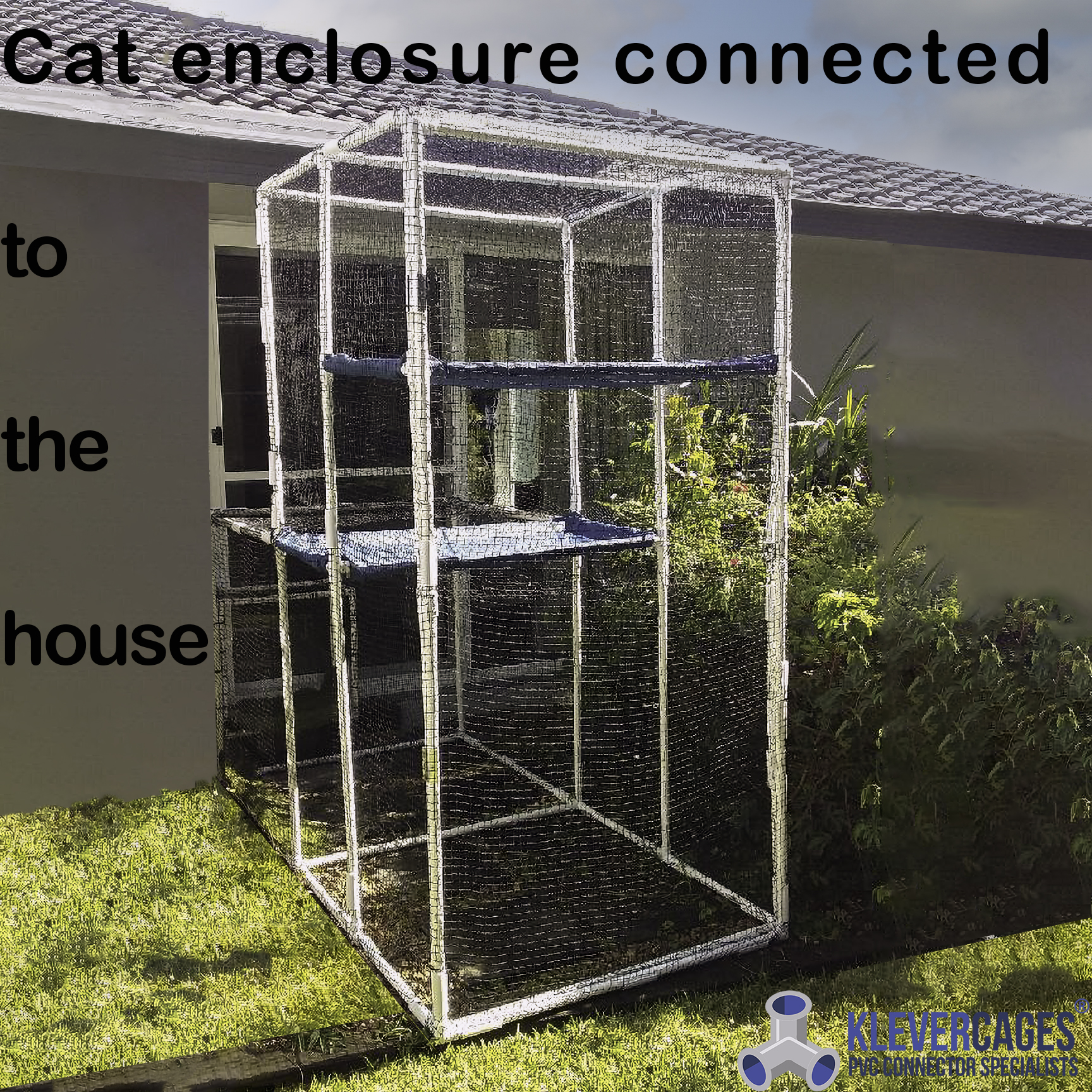 Build outdoor cat enclosures connected to hiouse like this one built with PVC pipe and connector fittings from Klever Cages