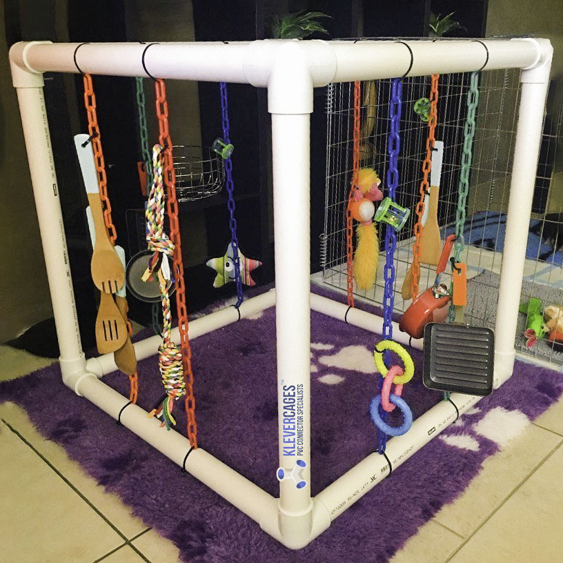 White puppy play activity gym built with 3way PVC connectors and pipe from Klever Cages with plastic chain and dog toys