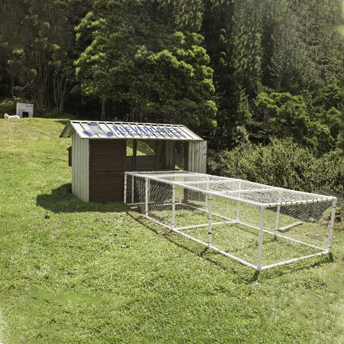 Chicken coop extension built with PVC connectors and pipe from Klever Cages. Built on a grassy hill with a white goat in the background