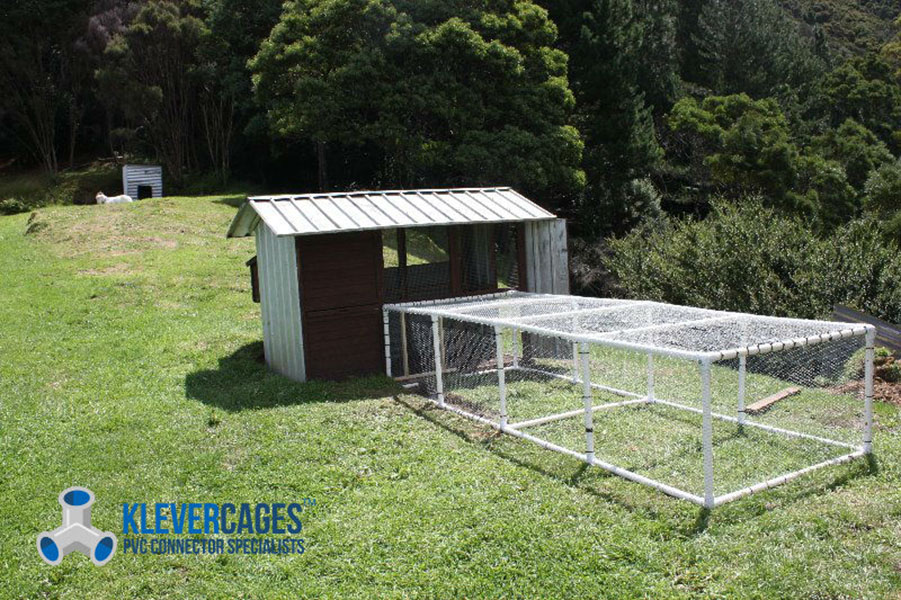 Chicken coop run made from PVC pipe and connectors from Klever Cages. Netting attached over with a goat at the top of the picture
