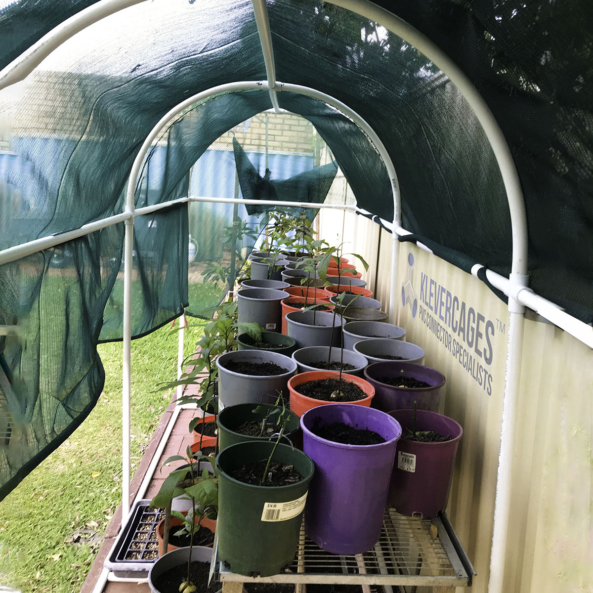 Arched shadehouse frame built with PVC pipe and connectors from Klever Cages. 20mm crosses, 3 ways, tees and snapclamps protecting pot plants with green shadecloth up against a fence