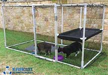 DIY cat enclosure using PVC pipe and connectors from Klever Cages. The frame is covered in netting and has a door and a hammock
