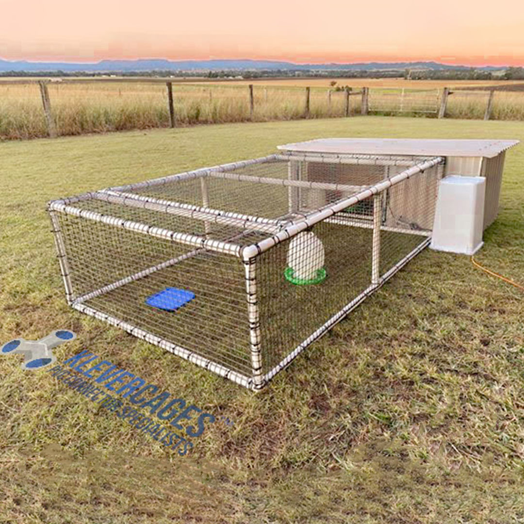 Corrugated iron chicken coop extension built from PVC pipe and connectors from Klever Cages. Easy to design and build, strong and easy to move if needed. Add a chicken coop / tractor frame covered with netting to your backyard.