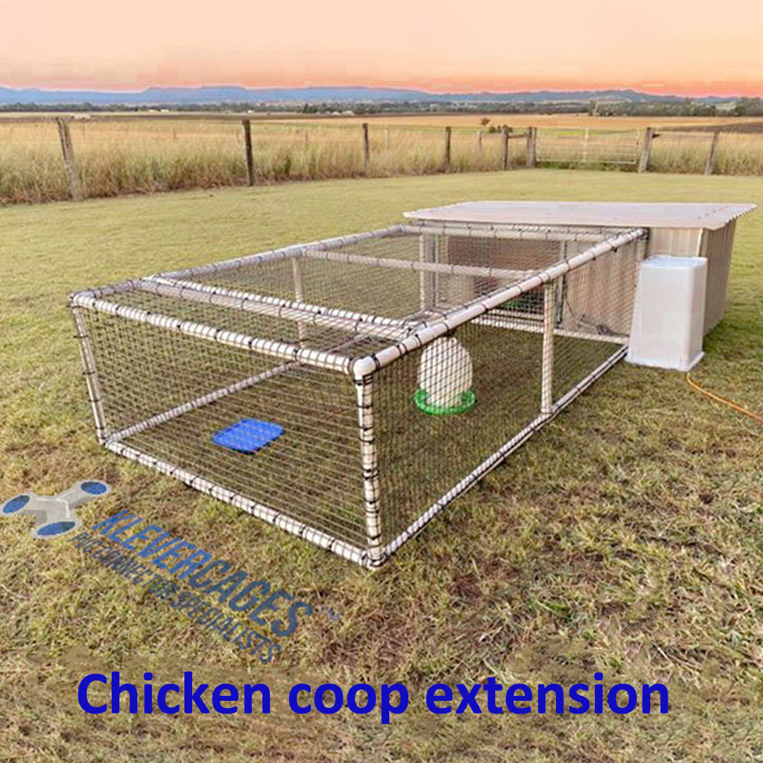 DIY chicken coop extension built with PVC connectors and pipe