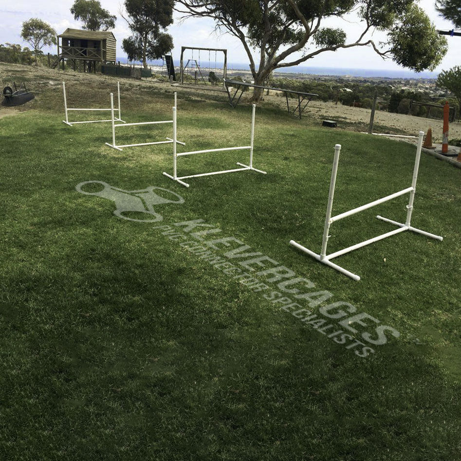 multiple dog agility jumps in a backyard for a dog agility course. Jumps built with PVC connectors and pipe from Klever Cages