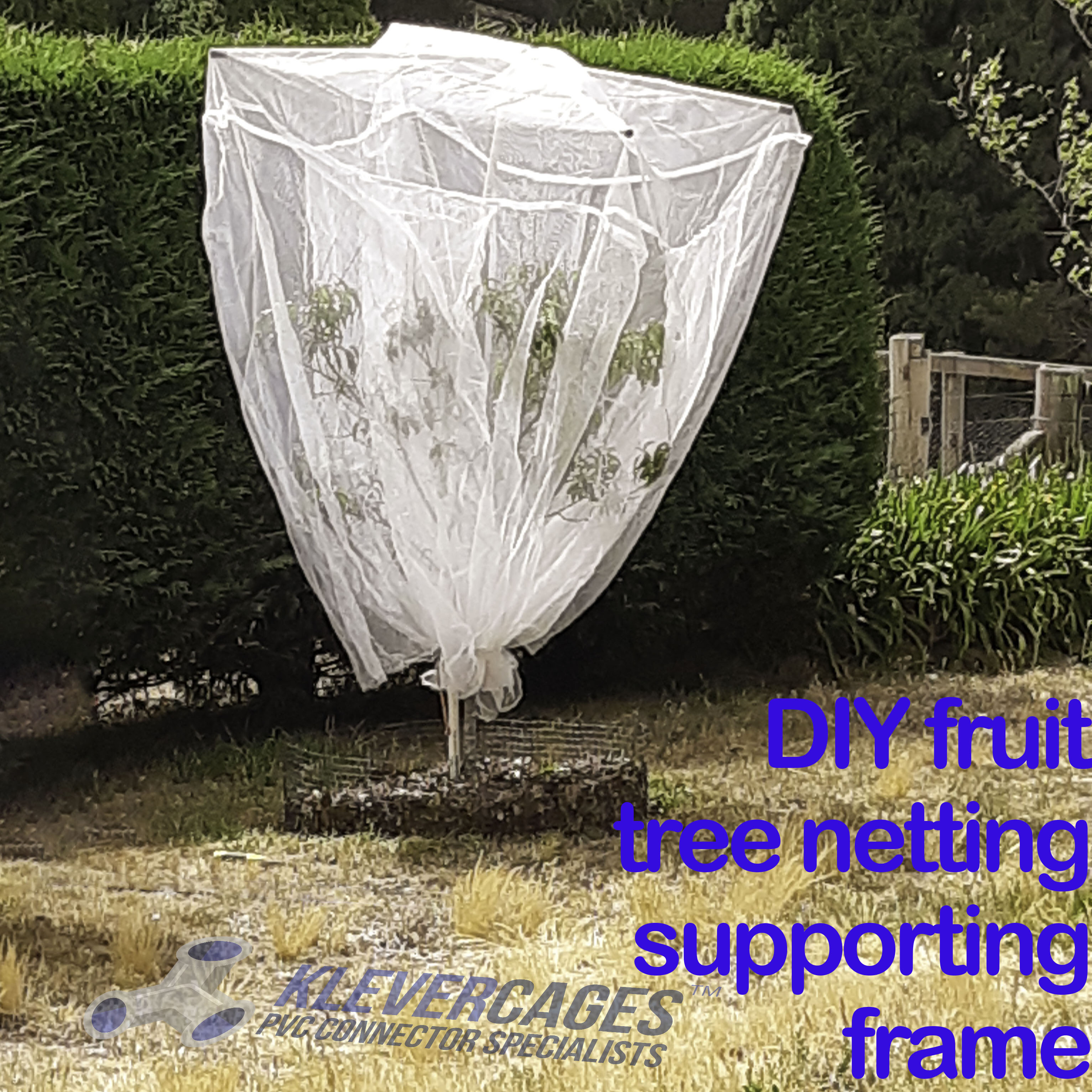 white fine mesh netting covering-a-fruit-tree-supported-with-a-PVC-pipe-and-Klever-Connectors-including-5way-and-caps-from-Klever-Cages-Australia