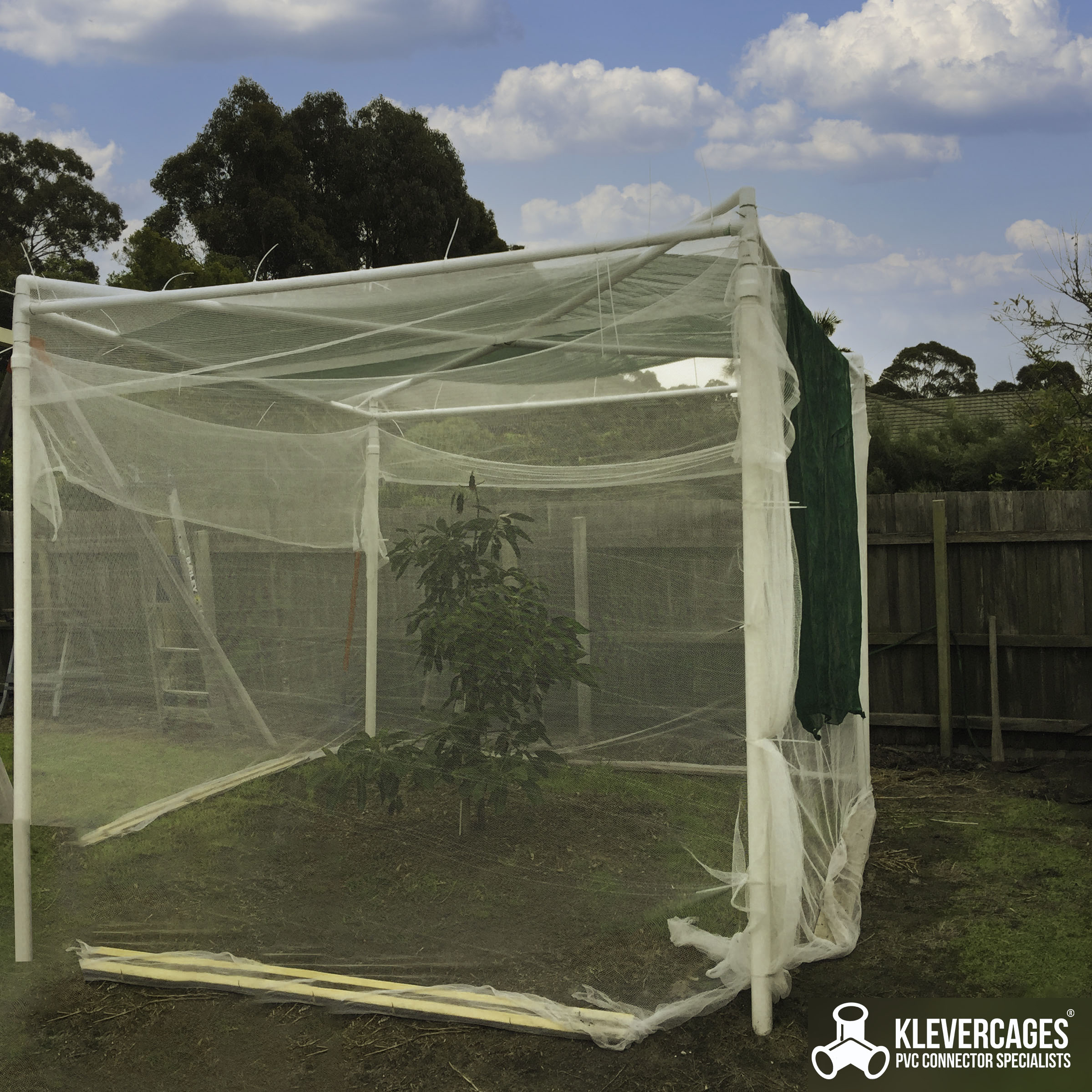 Fruit tree netting on a PVC pipe frame attached with zip ties protecting an Avocado tree from possums