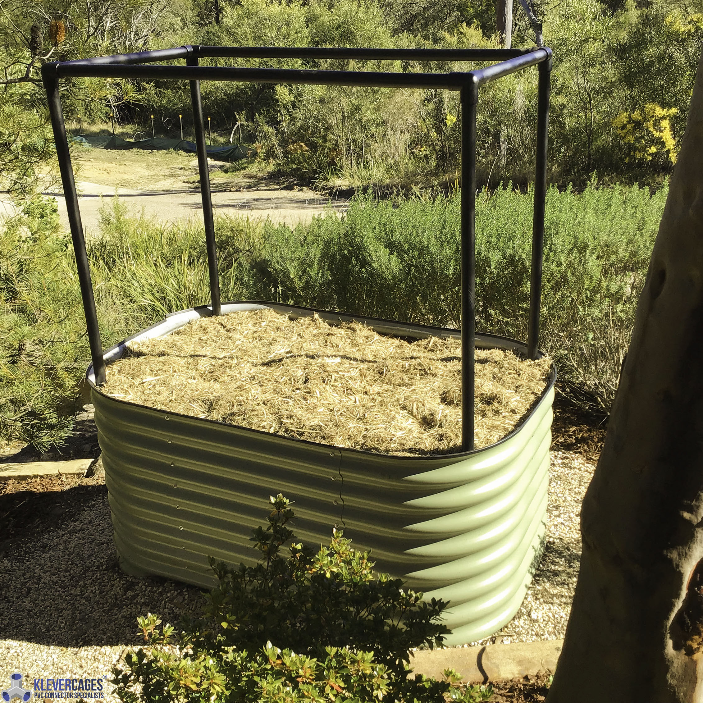 green-corrugated-iron-raised-garden-bed-with-a-black-pvc-pipe-frame-20mm-class-12-3-way-elbow-connector-fittings-klever-cages.jpg