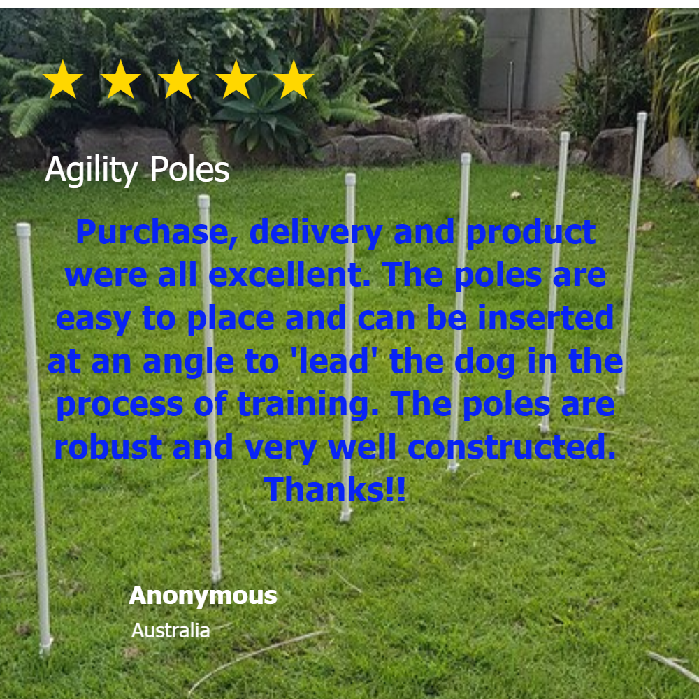 Dog agility equipment, weave poles from Klever Cages review 5 star rating