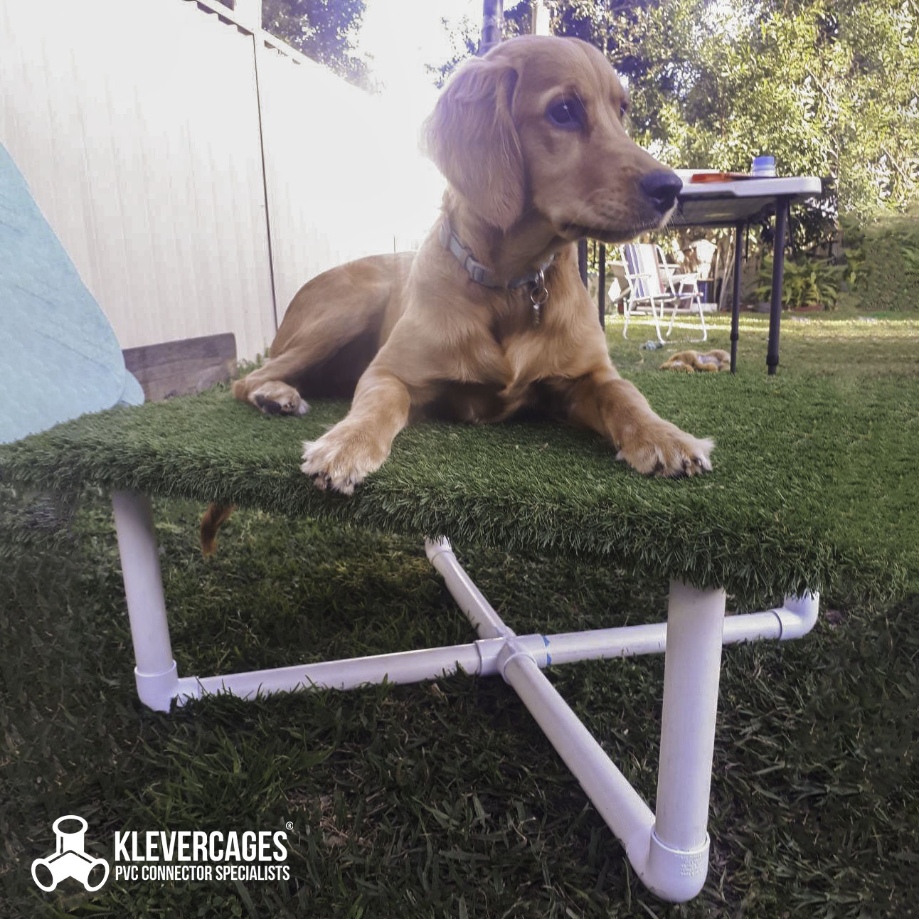 Lady sitting on a dog agility pause table built with PVC cross, elbow connector fittings and PVC pipe from Klever Cages