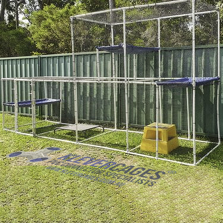Big cat enclosure built with PVC pipe, conectors and netting from Klever Cages Australia. Next to a fence with three cat hammocks